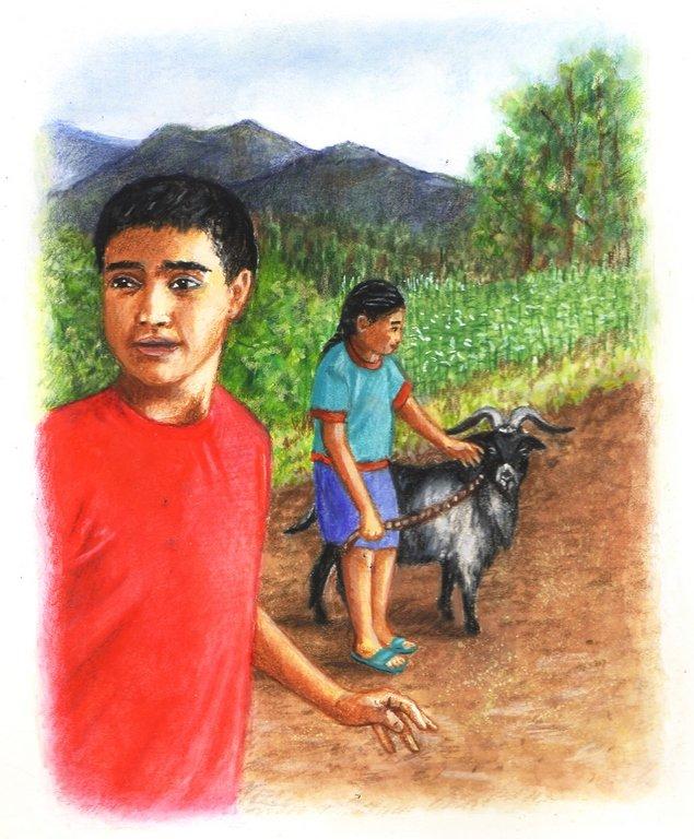 Our Pet Goat- Children's Book Illustration By Jacqui Grantford